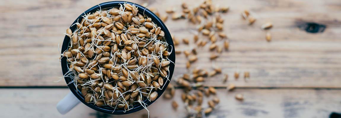 Spermidin in Getreideprodukten